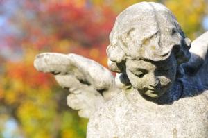 iStock_000027727620Medium - angel