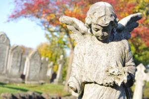 iStock_000027727638Medium - stone angel